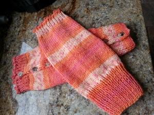 Allison's leg warmers