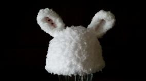 Nicu bunny hat