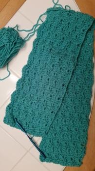 Donita blanket #3