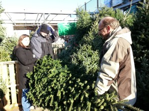 getting the tree again